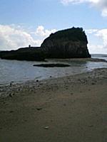 ... ▽北海道の海となんかちがうよなあ~って考えてたら、浜に昆布があがってないからだ。