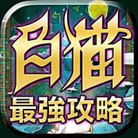 白猫最強攻略&協力バトル掲示板アプリ for 白猫プロジェクト