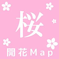 桜開花Map