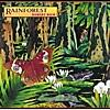Rainforest Suite: Forest Dreams of Bach