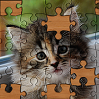 Jigsaw Puzzles!