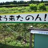 奥三河・四谷千枚田でアカハライモリを採ってきた【with RICOH GRⅡ】