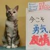 本日のポスター(2016年9月14日)