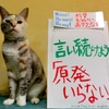 本日のポスター(2016年9月6日)