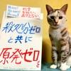 本日のポスター(2016年8月30日)