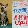 本日のポスター(2016年9月10日)