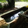 夏季休暇なので、一度行ってみたかった上の湯温泉「銀婚湯」に行ってきた