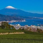実は都市伝説の宝庫で花火大会発祥の地!静岡県はなぜ日本の縮図と言われるのか?