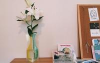 花の蕾が開くまで
