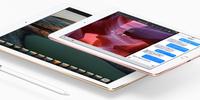楽天ふるさと納税でiPad Pro/Air2/mini4/mini2実質無料ゲット!さらにポイントバックも!
