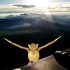 【ポケモンGO】富士山頂でポケモン獲ったどーー! 頂上でゲットしたポケモンは一体何だった??