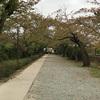 秋の風景 と あそびパークPLUS(小田原ダイナシティ店) と 美味しかったもの色々♪