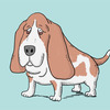 可愛い犬ランキング発表!個性的な種類を中心にイラストでご紹介