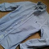 ジムフレックスのシャツを購入したのでレビューや評価など