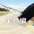 【初心者向け】大阪湾のサヨリ釣りスタートガイド[実釣編]