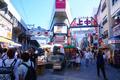 「上野」の良さをひたすら語る ~四季のある街、上野・浅草~