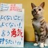 本日のポスター(2016年9月13日)
