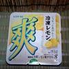 【新商品】 酸味が強いレモンアイス 爽 冷凍レモン