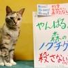本日のポスター(2016年9月4日)