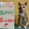 本日のポスター(2016年9月16日)