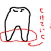 子どもの歯を歯医者で抜いてます…毎回。