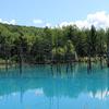 死ぬまでに一度は見たい絶景!美瑛の青い池に行ってきました(アクセス、お土産)