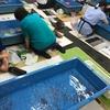 金魚すくいガチ勢の聖地「こちくや」でコツを学んできた@奈良・大和郡山