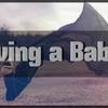 妊娠について男目線でほんの少し考える | 妊娠や出産は本当に奇跡。女性はゴイスー