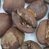 ホールビーンコーヒー(Whole-Bean Coffee)、グラウンドコーヒー(Ground Coffee)