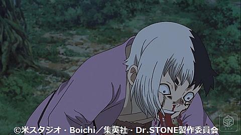 動画 ドクター ブログ アニメ ストーン