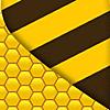 Osiri-LXIV DICOM viewer