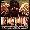 Livin' la Vida Loca (Remix) [feat. Big Pun, Fat Joe & Cuban Link]