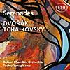 Serenade for Strings in E Major, Op. 22 / B.52: I. Moderato