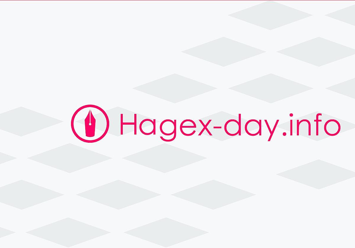 プロブロガーになって5000万円稼げる方法を教えます - Hagex-day info