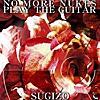 NO MORE NUKES PLAY THE GUITAR - Single