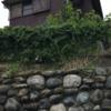 古家付き土地を買ってみたら 〜ログハウスと土地の話⑤