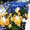 日本は言霊の国【ことば】に気を使っている理由
