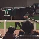キョンの競馬展望♪