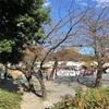 """第39回なかはら""""ゆめ""""区民祭(中原区民祭り)2017/11/12(日)"""