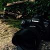 【雑記】初心者にカメラをオススメするときに考えていること