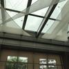 うす曇りの日曜日のランチは「グランドハイアット東京」の「フィオレンティーナ」で