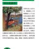「田舎教師 感想」田山花袋さん(岩波文庫)