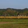 第1724列車 「 まるで117系!? 2ドア車の115系を狙う 2021・GW 山陽本線紀行その2 」