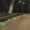 新川に架かる一番新しく夜景の綺麗な橋、中央大橋を散策