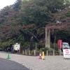 超ストレス発散したいときは高尾山にいこう!!自然に囲まれるのが最高に気持ちよかった(ダブルピース)