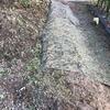 防草シートの代用