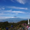 金時山から明神ヶ岳へ
