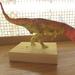 2017年の恐竜フィギュア教室