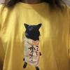 甲斐犬サン、ファンクラブを作られるの巻〜((((;゚Д゚)))))))マ、マタ勝手ニ……。