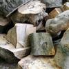 庭木の伐採について、見積もりと実際の作業の流れ